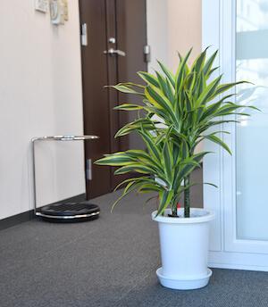 事務所の廊下の写真